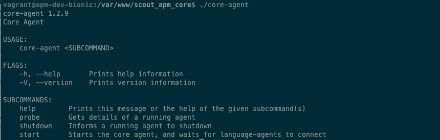 core agent startup info/output